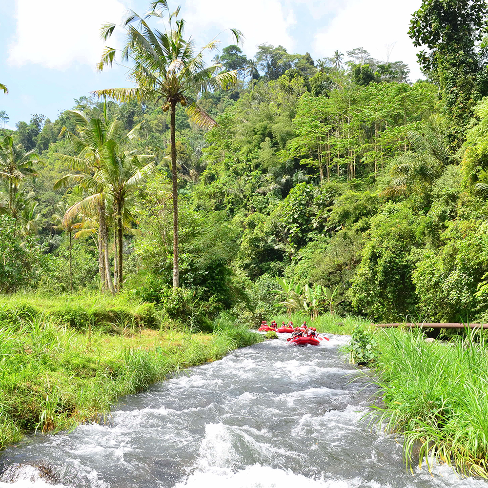 RAFTING - RIVIERE AYUNG